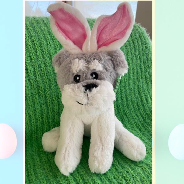 Easter 2021 - Terrier