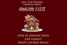 Fido Loves Amazon!